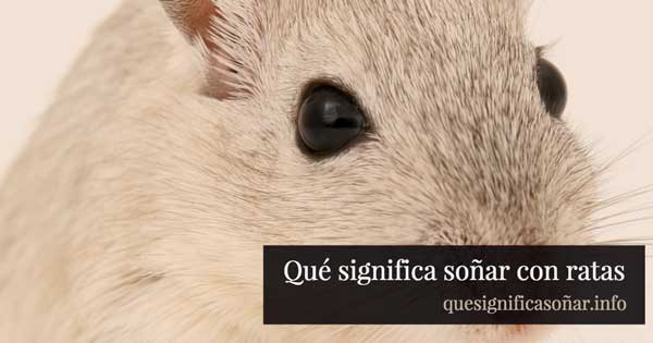 que significa soñar con ratas